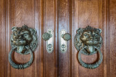 Vintage handles for doors. With a picture of a lion. — Stock fotografie