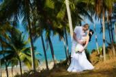 Wedding bride groom sea palm tree tropics — Zdjęcie stockowe