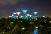 Night view of the garden singapore — Stock Photo