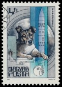 Stamp printed in Hungary shows Laika dog — Stock Photo