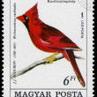 Stamp printed in Hungary shows common cardinal — Stock Photo #59025285