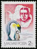 Stamp printed by Hungary shows discovering South Pole — Stock fotografie