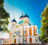 Aleksandra newskiego, prawosławny kościół katedralny w — Zdjęcie stockowe