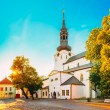 St Mary's Cathedral, Tallinn (Dome Church) — Stockfoto #56312605