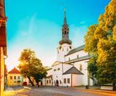 St Mary's Cathedral, Tallinn (Dome Church) — Photo