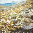 Stack Of Rocks On Norwegian Mountain, Norway Nature — Stock Photo #61354863