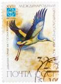Stamp printed in USSR Russia shows a bird Ciconia boyciana wit — Stock Photo