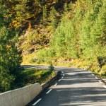 Norway, Road In Norwegian Mountains — Stock Photo #61759893
