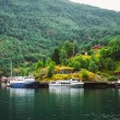 Sognefjord port in Flam, Norway, Norwegian longest and deepest f — Stock Photo #65053855