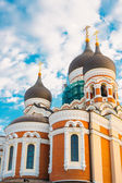 Alexander Nevsky Cathedral, An Orthodox Cathedral Church In The — Stock Photo