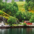 Sognefjord port in Flam, Norway, Norwegian longest and deepest f — Stock Photo #67464491