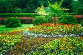 Garden Landscaping Design. Flower Bed, Green Trees And Bushes In — Stock Photo