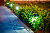 Solar Garden Light, Lanterns In Flower Bed. Garden Design — Stock Photo
