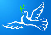 White dove with branch in blue sky — Stock Vector