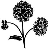 Dahlia flower silhouette — Stock Vector
