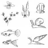 Aquariums image set — Stock Vector