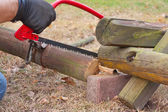 Sawing — Stock Photo