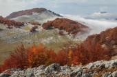De bergen mehedinti — Stockfoto