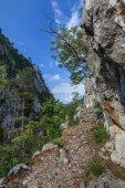 Tasnei Gorge, Romania — Stock Photo