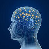 Brain, and pulses. process of human thinking — Stock Photo