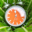 Alarm clock on the green leaves background — Stock Photo #68365659