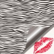 Zebra texture and lipstick kiss — Stock Vector #62103931