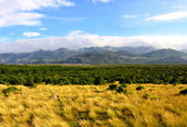 The Croatian landscape - Velebit Mountains-Croatia — Stock Photo