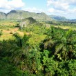 The Vinales valley in Cuba a famous tourist destination and a major tobacco growing area — Stock Photo #71514337
