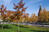 Alexander Garden and Moscow kremlin in autumn day in Moscow — Stock Photo