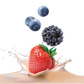 Blackberries, strawberries, blueberries and milk. Vector realistic illustration. — Stock Vector