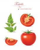 Tomato realistic. vector illustration — Stock Vector