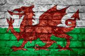 威尔士旗帜 — 图库照片