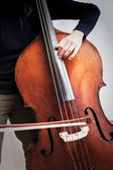 Bass player — Stock Photo