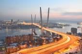 Night view for the bridge across the Golden horn bay in Vladivostok — Stock Photo