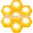 Vector Shana Tova (Happy new year) icon wish with honeycomb — Stock Vector #57510941