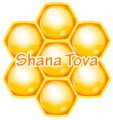 Vector Shana Tova (Happy new year) icon wish with honeycomb — Stock vektor
