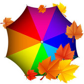Vector illustration of colorful umbrella with leaves — Stock Vector
