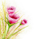 Watercolor flowers. — Stock Photo