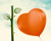 Rose thorn and Red Balloon — Stock fotografie