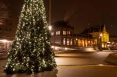 Christamas boom in stad dicht bij het treinstation — Stockfoto