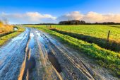 Rural landscape with wet road and grassland — Stock Photo