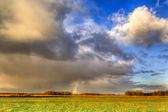 Landscape of grassland with rainbow at the horizon — Stock Photo