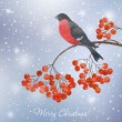 Winter background with bullfinch — Stock Vector #57892905