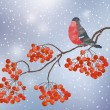 Winter background with bullfinch — Stock Vector #57892909