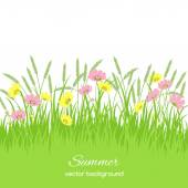 Spring card with grass and flowers — Vetor de Stock