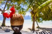 Coconut with straw — Stock Photo