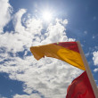 Surf life saving flag — Stock fotografie #61477875