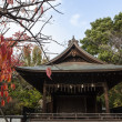 Red Autumn leaves at Toshogu Shrine (a Shinto temple in Ueno Park), Tokyo - Japan - Asia — Stock Photo #60899249