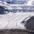 Athabasca Glacier And Columbia Ice Field — Stock Photo #60287189