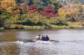 Rowing In The Fall — Stock Photo